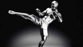 """Risultati degli """"MMA Mania.it Awards 2009"""""""