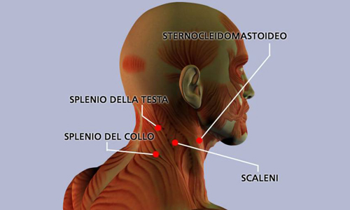 Fondo di occhio osteochondrosis cervicale