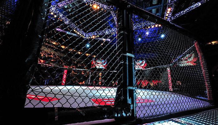 MMA: Gabbia UFC