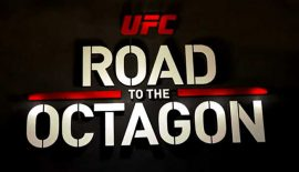 UFC - Road to the Octagon