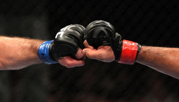 Lavora con noi - MMA Mania